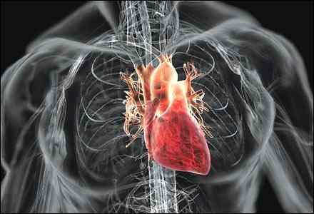 Đau thắt ngực là mầm non của nhồi máu cơ tim