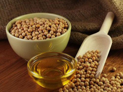 Tác dụng sinh học và công dụng của các axit hữu cơ và chất béo có trong thực vật
