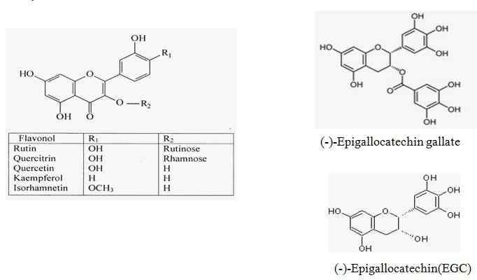 Tác dụng sinh học của nhóm chất flavonoit có trong thảo dược