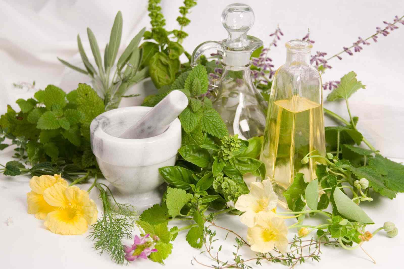 Sự lên ngôi của thuốc từ thực vật