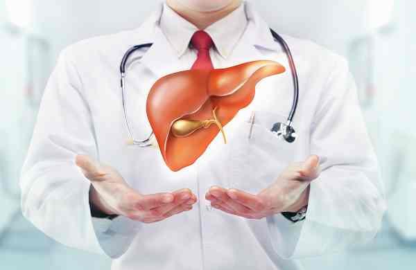 Liver++ với viêm gan siêu vi B – Sự trợ giúp đáng kể từ y học bản địa